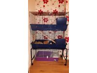 Two tier guinea pig cage with stand
