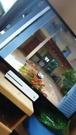 BUSH 40 INCH SMART TV