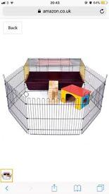 Guinea Pig/ Rabbit set up