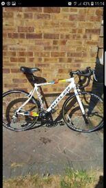 Claud butler San remo road bike