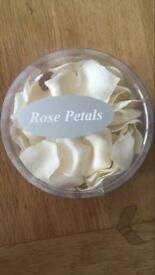 Rose petals - creme and red
