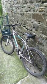 Claud Butler Trail Ridge Mountain Bike
