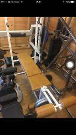 Gym Bench plus Bicep attachment/ leg curl and dips