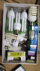 Collection of various light bulbs