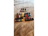 Assortment of 21 Nail Varnishes
