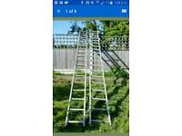 Ladders 22ft