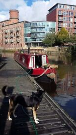 Beautiful 55ft Sagar Marines Traditional Narrowboat Liveaboard with Armstrong Sidley Engine