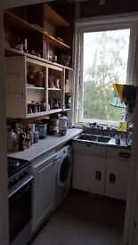 Flatmate wanted (UoE students only!!!)