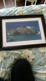 Carrick a rede photo