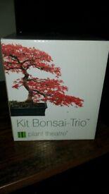 Bonsai kit -Trio