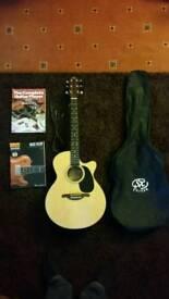 SX custom semi acoustic guitar