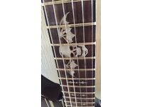 Schecter Synyster Standard not Les Paul Fender PRS BC Rich Real Rock Guitar