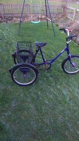 tricycle for sale