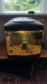 Fish box fish tank