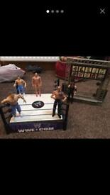 WWE ring wrestlers and entrance