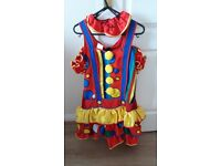 Dazzle Clown Fancy Dress Costume - Size 18