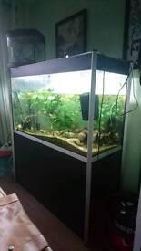 Tanks, equipment and decor