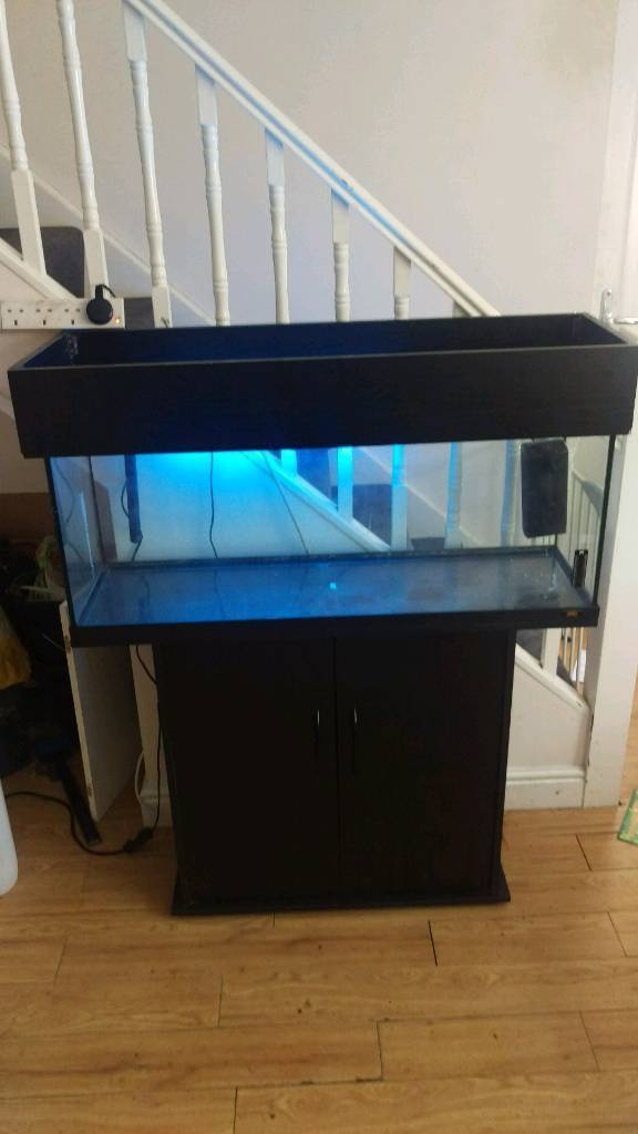 Juwel 120L Tropical Fish TankAquarium Setupin Morpeth, NorthumberlandGumtree - Juwel Fish Tank & Stand Comes with all of the below Juwel 120L Tank Juwel Fitted Stand Working Light (T8 Unit & Bulb)Internal Filter Tropical Heater No lid on hood