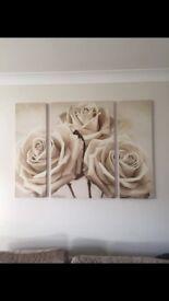 Cream Roses Canvas