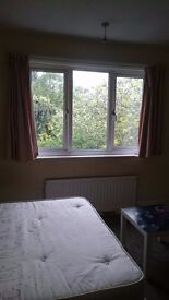 Double room with garden view in Hendon Central, prime location for travel