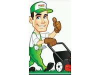 Grass cutting , garden maintenance bushes cut clearance and handyman services gardening