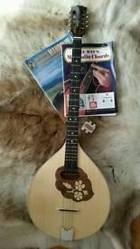Ozark Octave mandolin