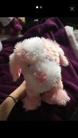 Pink dog teddy