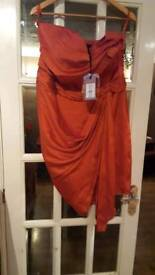 Coast burnt orange dress