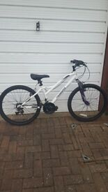 Girls 24inch Muddyfox Mountain Bike