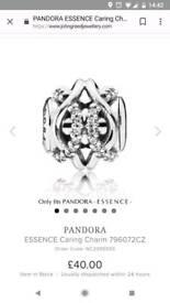 Pandora charm new