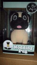 Nodding Pug