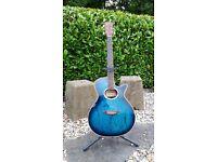Hohner HFA 550 Guitar