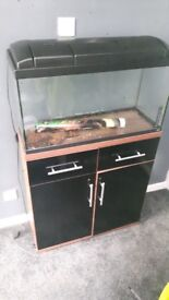 Fish tank and stand with some equipment