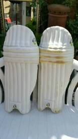 Cricket pads and kit