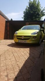 Vauxhall adam jam cat d