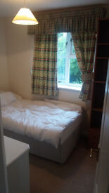 Single bedroom with private bathroom 350 per months bills included