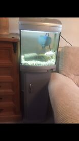 Fish tank , stand,light,heater and filter free local delivery