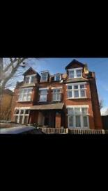 Cosy Studio Flat for rent in Epsom