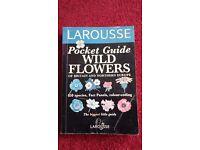 Pocket Guide to Wild Flowers - Identify edible plants - tortoises & lizards - Bearded Dragon