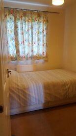 Single bedroom, 15 min walk to town, £300