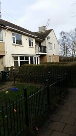 Well presented immaculate three bedroom house to let in BD4!!!
