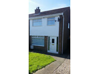 Three Bedroom Semi-Detached House To Let - Downshire Road Area, Carrickfergus