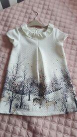 NEXT dress 2-3