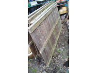Fencing panels strong wood in good condition 6ft x 3ft five in total feather edge