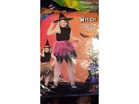 Reversible witch costume