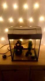 Fish tank with decorations tetra tank