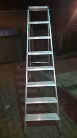 Industrial Werner step ladders