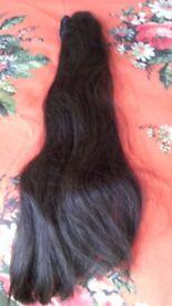 Two lovely long black. ponytail.s