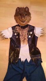 Werewolf Dressing Up Costume