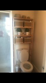 Bathroom storage - over toilet shelving unit